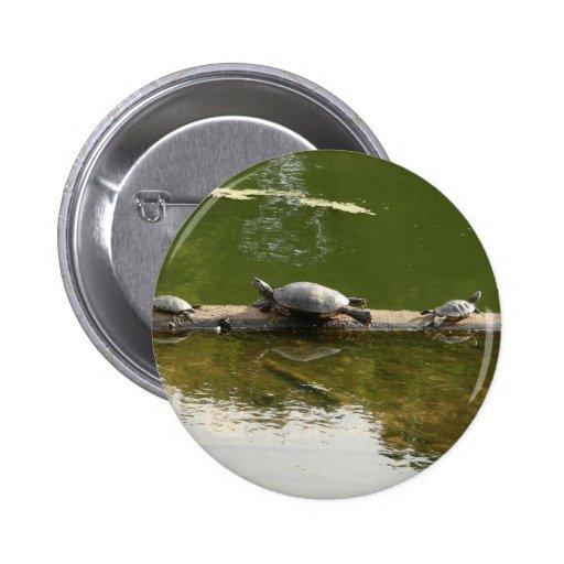 reptile merchandise pin