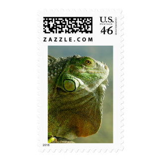 reptile merchandise stamps