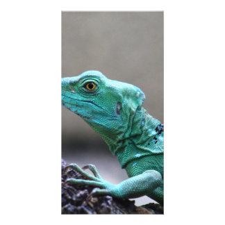 Reptile Photo Card