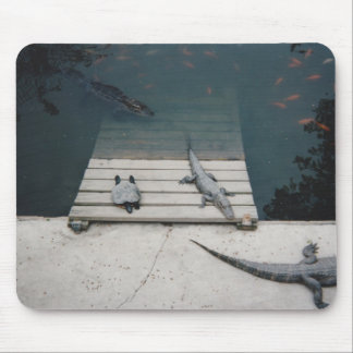 Reptiles Basking Mouse Pad