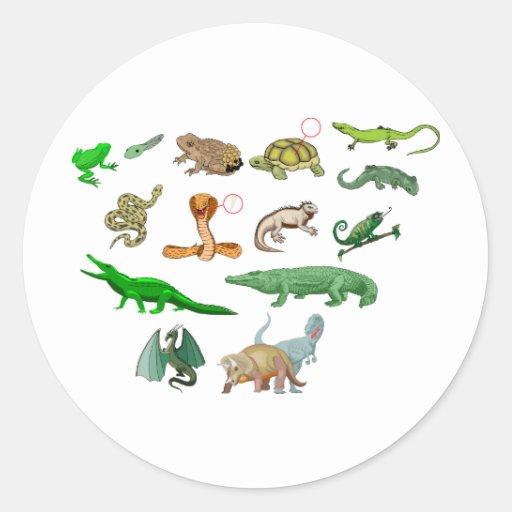 reptiles coleção de répteis ilustração didático adesivos