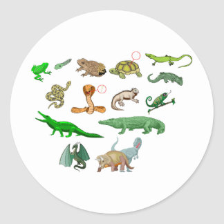 reptiles collection of reptiles didactic illustrat classic round sticker