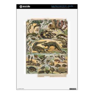 Reptiles iPad 3 Skin