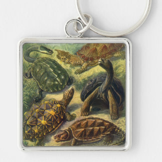 Reptiles marinos del vintage, tortuga de la tierra llavero cuadrado plateado