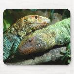 Reptiles Mousepad