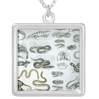 Reptiles, Serpents and Lizards Silver Plated Necklace