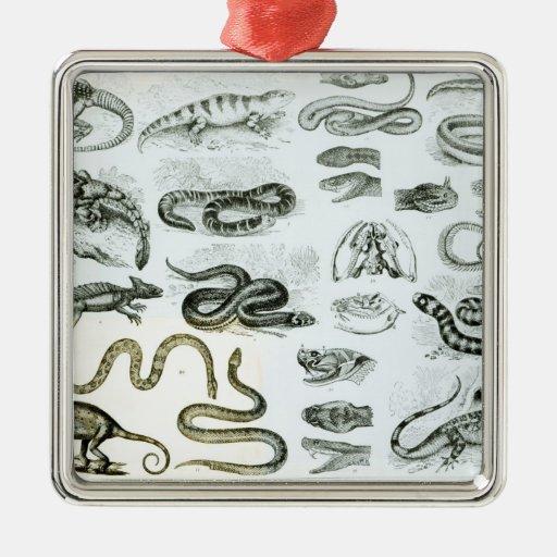 Reptiles, serpientes y lagartos adorno navideño cuadrado de metal