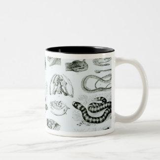 Reptiles, serpientes y lagartos taza de dos tonos