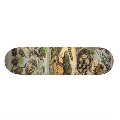 Reptiles Skateboard Deck