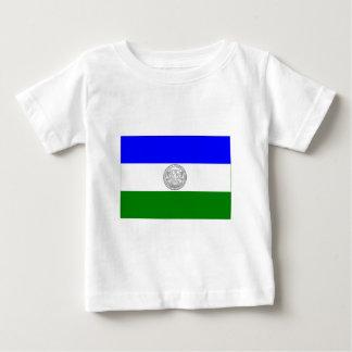 Republic of Jämtland flag (unofficial) Shirt