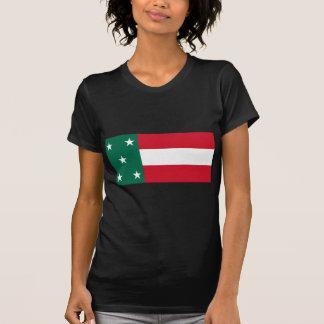 Republic Of Yucatan, Mexico flag Tees