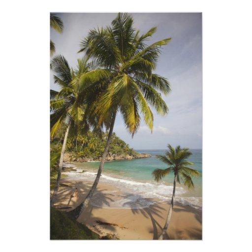 República Dominicana, costa del norte, Abreu, Play Cojinete
