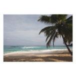 República Dominicana, costa del norte, Abreu, Play Fotografía