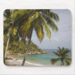 República Dominicana, costa del norte, Abreu, Play Tapetes De Ratón