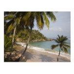 República Dominicana, costa del norte, Abreu, Play Tarjeta Postal