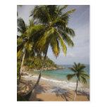 República Dominicana, costa del norte, Abreu, Tarjetas Postales