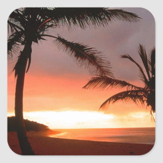 República Dominicana de las palmas tropicales de Pegatina Cuadrada
