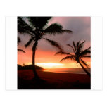 República Dominicana de las palmas tropicales de Postal