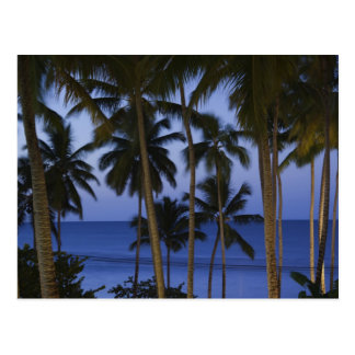 República Dominicana, península de Samana, Las Tarjeta Postal