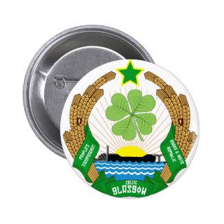 Republik del Celtic Glasgow Pin Redondo 5 Cm