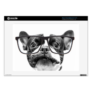 Reputable French Bulldog with Glasses Acer Chromebook Decals