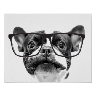 Reputable French Bulldog with Glasses Poster