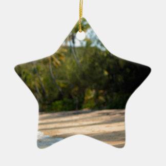 Resaca apacible en una playa del Fijian Adorno De Cerámica En Forma De Estrella