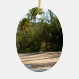 Resaca apacible en una playa del Fijian Adorno Ovalado De Cerámica