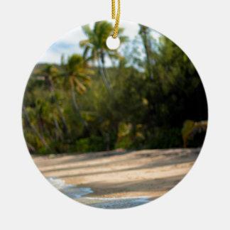 Resaca apacible en una playa del Fijian Adorno Redondo De Cerámica