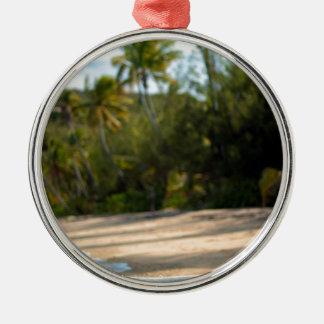 Resaca apacible en una playa del Fijian Adorno Redondo Plateado
