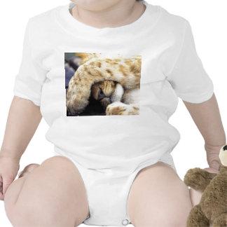 resaca grande del gatito camisetas