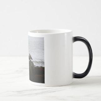Resaca para arriba en la ensenada tazas de café