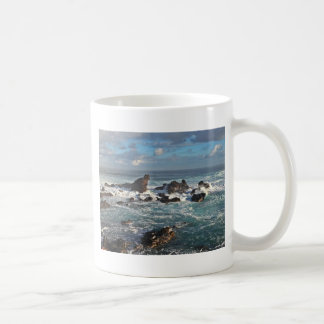 Resaca playa Maui