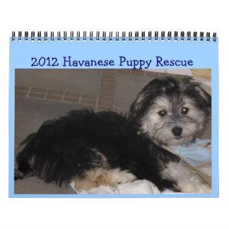 Rescate 2011 del perrito de Havanese Calendario