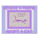 Rescate a un amigo - adopte un poster del gato