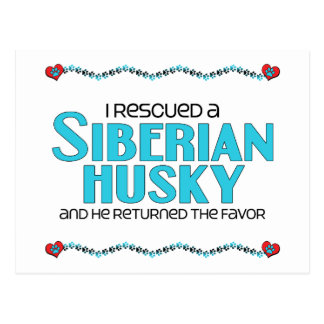 Rescaté a un husky siberiano (el perro masculino) postal
