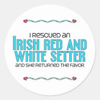 Rescaté a un organismo rojo y blanco irlandés (de pegatina redonda