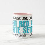 Rescaté a un organismo rojo y blanco irlandés (el  taza