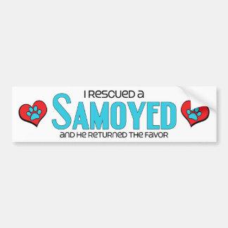 Rescaté a un samoyedo (el perro masculino) pegatina de parachoque