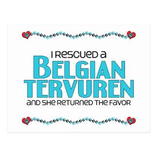 Rescaté a un Tervuren belga el perro femenino Tarjetas Postales