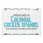 Rescaté cocker spaniel colonial (el perro femenino