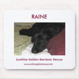 Rescate del perro perdiguero de Raine - de Sunshin Alfombrilla De Ratones