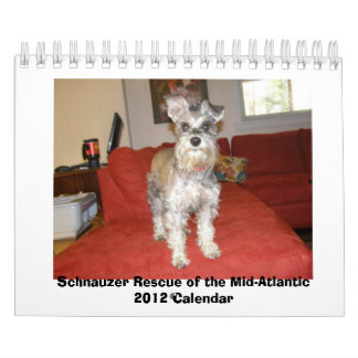 Rescate del Schnauzer del 2012 Mediados Calendario De Pared