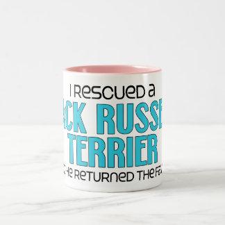 Rescaté Jack Russell Terrier (el perro masculino) Tazas