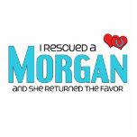Rescaté Morgan (el caballo femenino) Esculturas Fotográficas