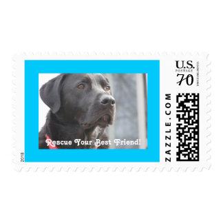 Rescate negro del laboratorio sello de 70 centavos