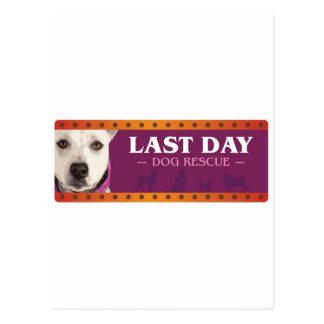 Rescate pasado del perro del día tarjetas postales