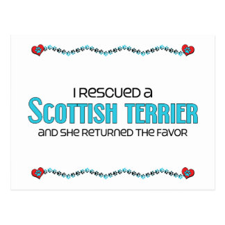 Rescaté Terrier escocés (el perro femenino) Tarjetas Postales