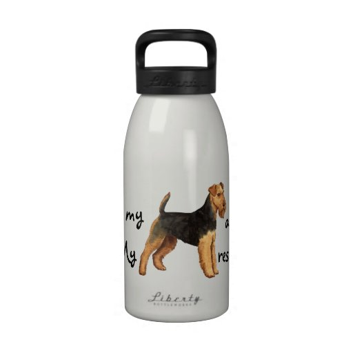 Rescate Terrier galés