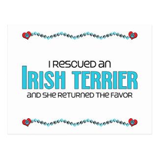 Rescaté Terrier irlandés el perro femenino Postal